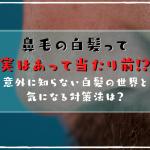 鼻毛の白髪って実はあって当たり前!?意外に知らない白髪の世界と気になる対策法は?