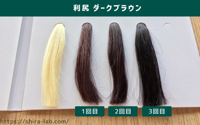 100%の白髪毛束に利尻ヘアカラーの人気色のダークブラウンを使ってみた結果