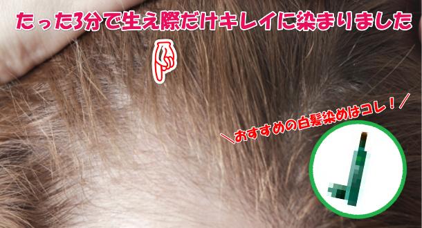 部分白髪染め おすすめランキング