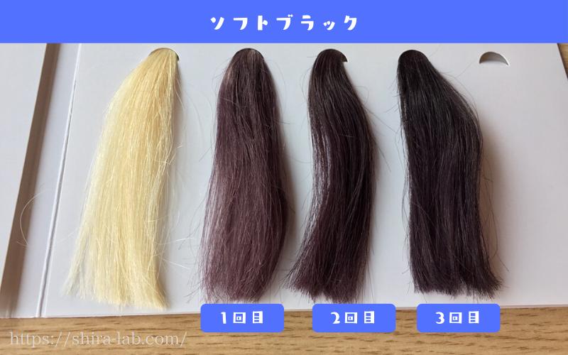 ルプルプのソフトブラックを白髪100%の毛束に使ってみた結果