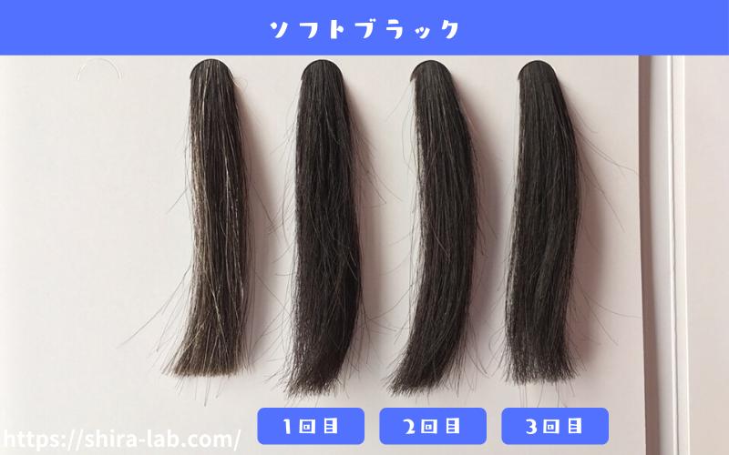 ルプルプのソフトブラックを白髪30%の毛束に使ってみた結果