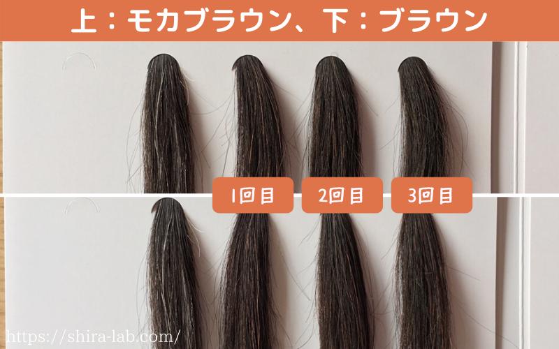 ルプルプのモカブラウンとブラウンの染まり具合の違い(白髪50%)