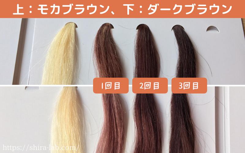 ルプルプのモカブラウンとダークブラウンの染まり具合の違い(白髪100%)