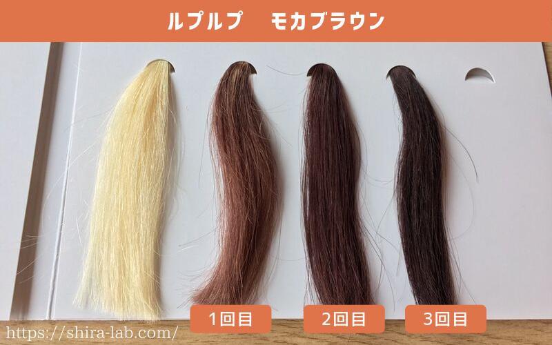 ルプルプのモカブラウンはどう染まるのか、1回・2回・3回染めた毛束を並べてみた(白髪100%)