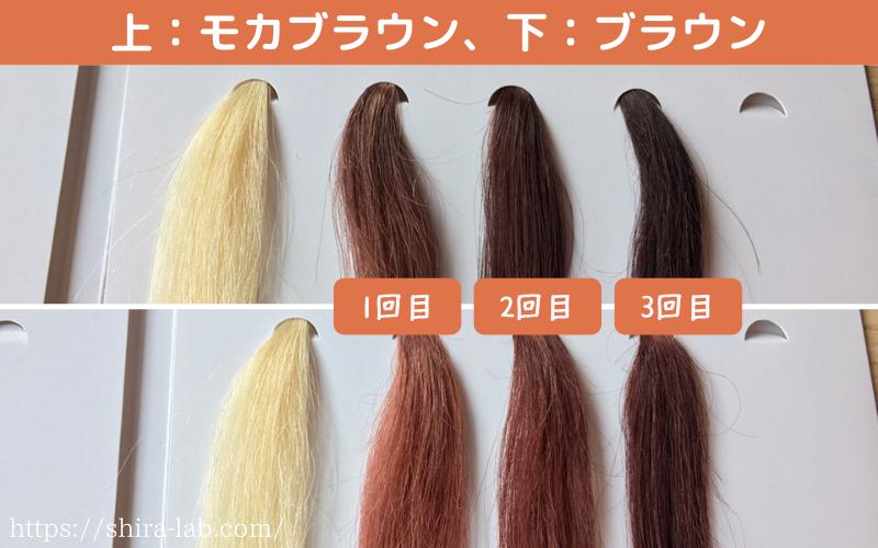 ルプルプのモカブラウンとブラウンの染まり具合の違い(白髪100%)