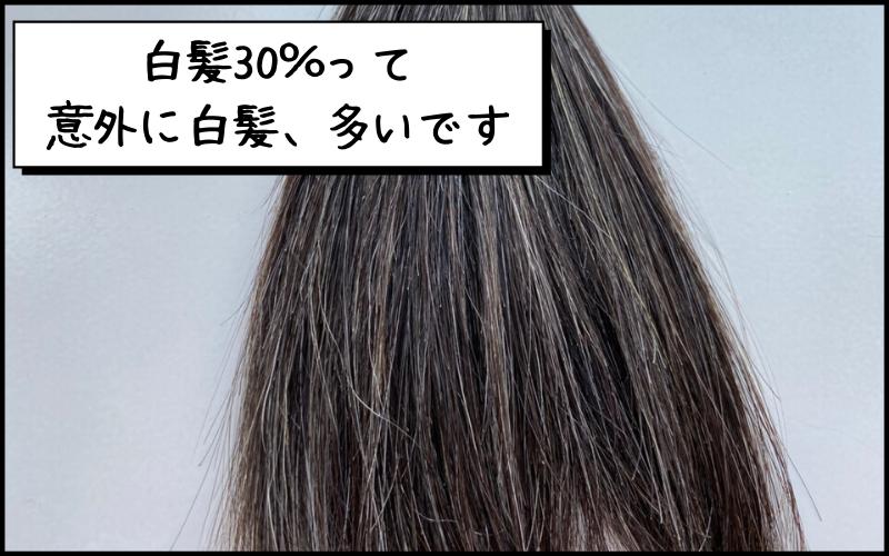 白髪30%の毛束を見てみると意外に白髪が多いって気づかない?