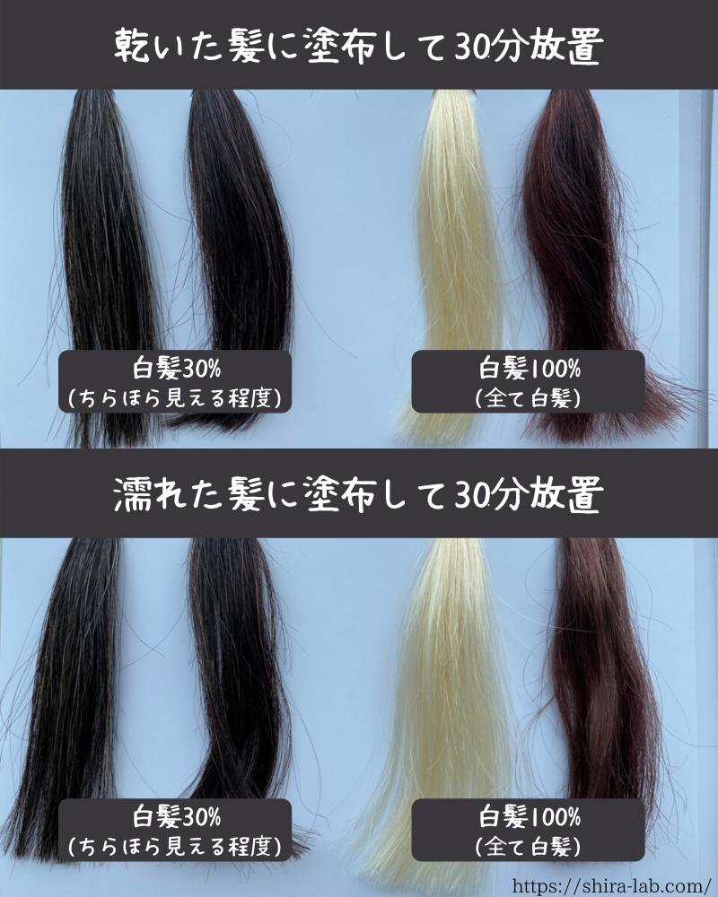 乾いた髪と濡れた髪にそれぞれ利尻ヘアカラートリートメントを使ってみた結果