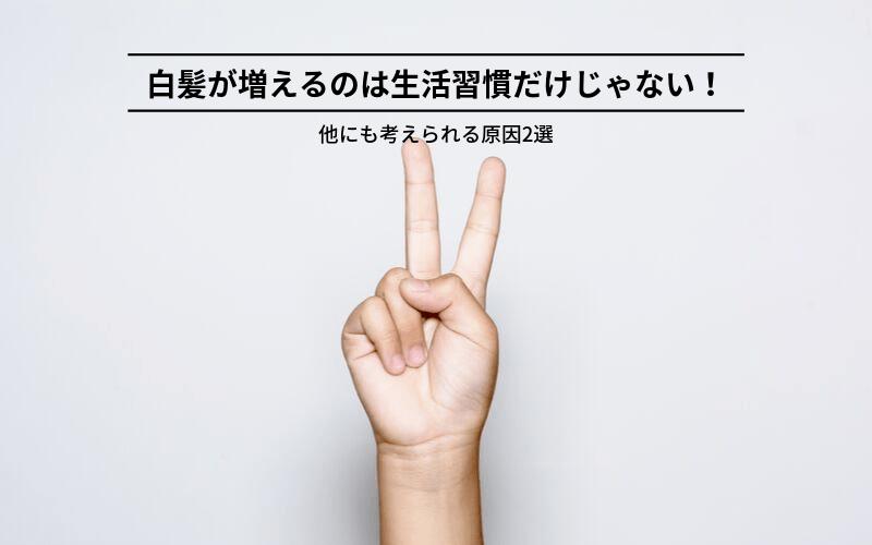 白髪 生活習慣 キャッチ画像②