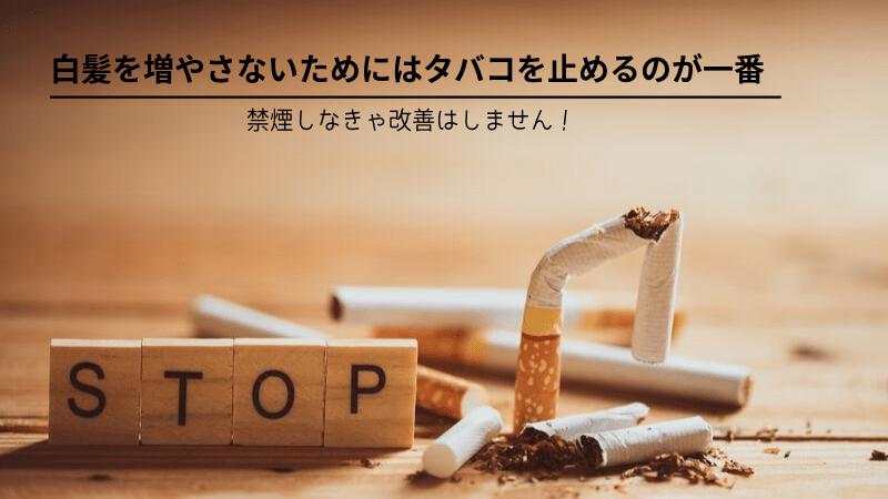 白髪 タバコ キャッチ画像②